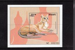 673699219 NICARAGUA 2000 POSTFRIS MINT NEVER HINGED POSTFRISCH EINWANDFREI SCOTT 2323 CAT BURMESE - Nicaragua