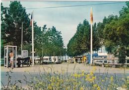 """CPSM - 85 - VENDEE - SAINT MICHEL EN L'HERM """" Le Camping Municipal """" - Saint Michel En L'Herm"""