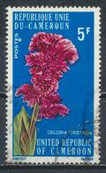 °°° CAMERUN - Y&T N°579 - 1975 °°° - Camerun (1960-...)