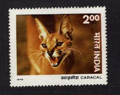 673723192 INDIA 1976 POSTFRIS MINT NEVER HINGED POSTFRISCH EINWANDFREI SCOTT 739 CARACAL WILDLIFE PROTECTION WILD CATS - Neufs