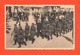 Albenga Sfilata Di Fanteria - War, Military