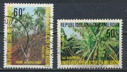 °°° CAMERUN - Y&T N°656/58 - 1980 °°° - Camerun (1960-...)