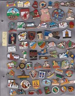 Lot De 76 Pin's Des PO (66) - Badges