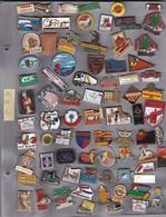 Lot De 77 Pin's Des PO (66) - Badges