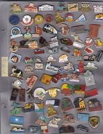 Lot De 83 Pin's Des PO (66) - Badges
