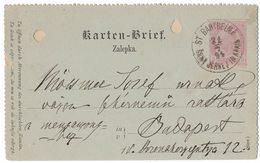 JP348   SLOVENIA Šentjernej / St Barthelmä  On Karten-Brief 5K. 21/071894 To Budapest - Slovénie