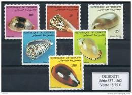 Djibouti.  Coquillages - Djibouti (1977-...)