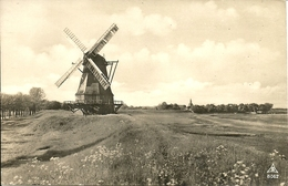 Holland (Paesi Bassi) Bloomenland, Molenland, Land Of Flowers And Wind-Mills, Mulino A Vento - Netherlands