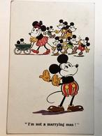 AK  WALT DISNEY  MICKEY MOUSE   1931. - Disneyworld