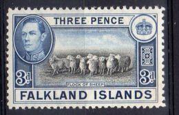 FALKLAND ( POSTE ) : Y&T  N°  81A  TIMBRE  NEUF  SANS  TRACE  DE  CHARNIERE , ROUSSEUR  . - Falkland
