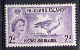 FALKLAND ( POSTE ) : Y&T  N°  118  TIMBRE  NEUF  SANS  TRACE  DE  CHARNIERE  . - Falkland