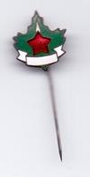 Vintage Enamel Pin Scout Association Of Yugoslavia Scouting Scouts - Scoutisme