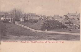 119 Diest Les Fortifications Et Vue Sur La Ville - Diest