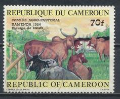 °°° CAMERUN - Y&T N°749 - 1984 °°° - Camerun (1960-...)