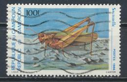 °°° CAMERUN - Y&T N°784 - 1986 °°° - Camerun (1960-...)