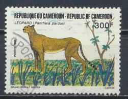 °°° CAMERUN - Y&T N°798 - 1986 °°° - Camerun (1960-...)