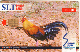 SRI LANKA(chip) - Jungle Fowl, Sri Lanka Telecom Rs.100, No CN, Used - Sri Lanka (Ceylon)