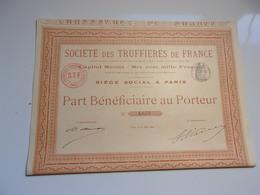 TRUFFIERES DE FRANCE (1899) - Azioni & Titoli