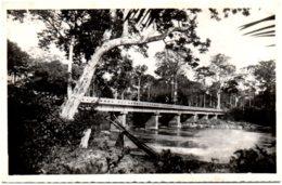 BANGUI - Pont Sur L'M' Poko - Centrafricaine (République)