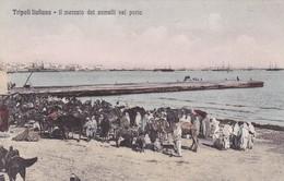 TRIPOLI ITALIANA. IL MERCATO DEI CAMELLI NEL PORTO. ALTEROCA. CIRCA 1910s-RARE- BLEUP - Libië