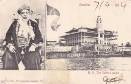 ZANZIBAR. H.H. THE SULTAN's PALACE. COSTINHO BROS. CIRUCULEE 1904, SIGNEE, UNE TIMBRE ARRACHE DE LE FRONT-RARE- BLEUP - Tanzania
