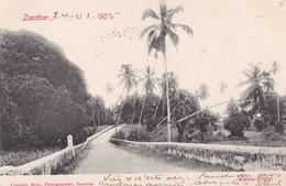 ZANZIBAR. WALEZO BRIDGE. COUNTINHO BROS. CIRCULEE 1905 A PORTUGAL-RARISIME- BLEUP - Tanzania