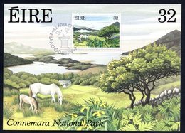 1989 IRELAND NATIONAL PARKS GARDENS CONNEMARA MAXIMUM CARD - Cartoline Maximum