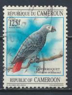 °°° CAMERUN - Y&T N°877 - 1995 °°° - Camerun (1960-...)