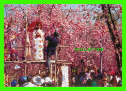 KUNMING, CHINE - WHEN THE FLOWERS ARE IN FULL BLOOM, CHERRY FLOWERS IN YUANTONG PARK - - Chine