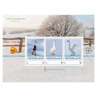 Nederland  2018 Vogels 2     Eend Zwaan  Duck Swan                Blok/m/s   Postfris/mnh/neuf - Period 1980-... (Beatrix)
