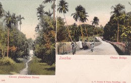 ZANZIBAR. CLOVES PLANTATIONS STREET; OLEIZO BRIDGE A.C. GOMES & SONS. MULTI VUE VIEW VISTA. CIRCA 1910s-RARISIME- BLEUP - Tanzania