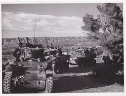 Grande Photo  : Débarquement De Provence 1944, Colonne De Chars Dans L'arrière Pays (83) Au 1er Plan Le Char Champagne - Guerre, Militaire