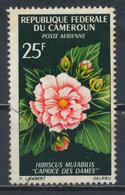 °°° CAMERUN - Y&T N°81 PA - 1966 °°° - Camerun (1960-...)