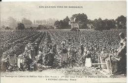 Fronsac,vins De Bordeaux,Ponty-Dezeix - France