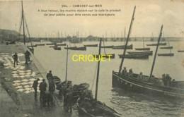 29 Camaret, à Leur Retour Les Marins étalent Le Produit De Leur Pêche, Affranchie 1911, Beau Plan - Camaret-sur-Mer