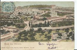 PALESTINE - Le Mont Des Oliviers - Palestine