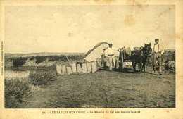 Les Sables-d'Olonne La Récolte De Sel Aux Marais Salants - Sables D'Olonne