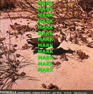 Fotografia PAVONCELLA Avifauna Comune Cacciabile Della Puglia Con SCHEDA ILLUSTRATIVA (195x195mm) - PERFETTA - Altre Collezioni