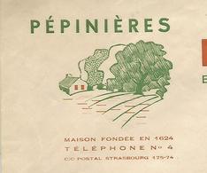 Facture 1948 / 68 BOLLWILLER / BAUMANN / Pépinières - 1900 – 1949