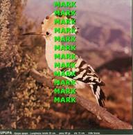 Fotografia UPUPA Specie Comuni Protette Della Puglia Con SCHEDA ILLUSTRATIVA (195x195mm) - PERFETTA - Altre Collezioni
