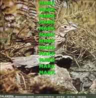 Fotografia CALANDRA Specie Comuni Protette Della Puglia Con SCHEDA ILLUSTRATIVA (195x195mm) - PERFETTA - Altre Collezioni