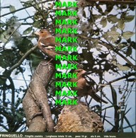 Fotografia FRINGUELLO Specie Comuni Protette Della Puglia Con SCHEDA ILLUSTRATIVA (195x195mm) - PERFETTA - Altre Collezioni