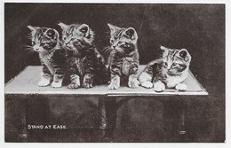 Cats - Stand At Ease. - Cats