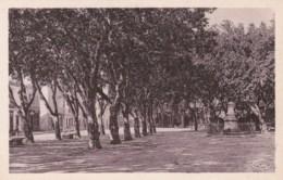 26 - PIERRELATTE - Le Champ De Mars - Autres Communes