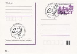 I0288 - Tchécoslovaquie (1991) Plzen 1: Congrès Du Syndicat Des Travailleurs Des Postes Et Communications - Poste