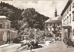 23/FG/18 - REPUBBLICA CECA - KRKONOSE: JANSKE LAZNE , Particolare - Repubblica Ceca