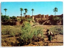 #370  Sud Marocan, Taorirt:Vers La Source - MAROCCO - Used Postcard 1986 - Altri