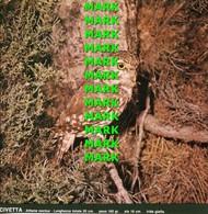 Fotografia CIVETTA Rapaci Protetti Della Puglia Con SCHEDA ILLUSTRATIVA (195x195mm) - PERFETTA - Altre Collezioni