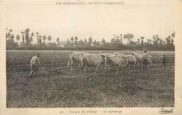 CPA 03 Allier Le Bourbonnais Pittoresque - 30 Travaux Des Champs Le Labourage -charrue Attelage Boeufs Paysans - Montlucon