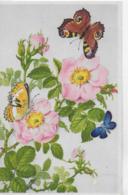 AK 0088  Heckenrosen Und Schmetterlinge - Künstlerkarte V. E. Dermitz Um 1940 - Blumen